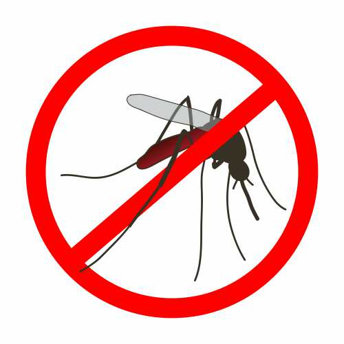 presupuesto de mosquiteras en valencia